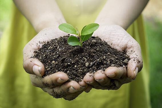 brohm_nachhaltigkeit_stage_s